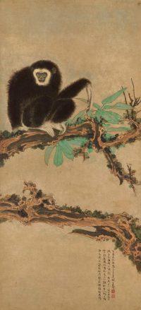 Gibbon Wallpaper 4