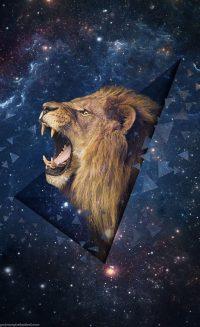 Leo Wallpaper 3