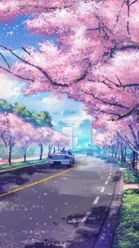 Pink Wallpaper 27