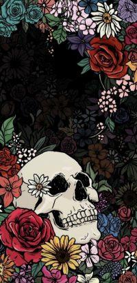 Skeleton Wallpaper 19