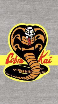 Cobra Kai Wallpaper 5