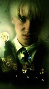 Draco Malfoy Wallpaper 13