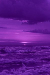 Purple Wallpaper 19