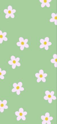 Sage Green Wallpaper 21