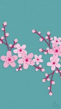 Cherry Blossom Wallpaper 15