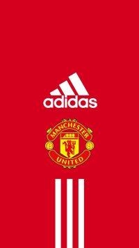 Man Utd Wallpaper 8