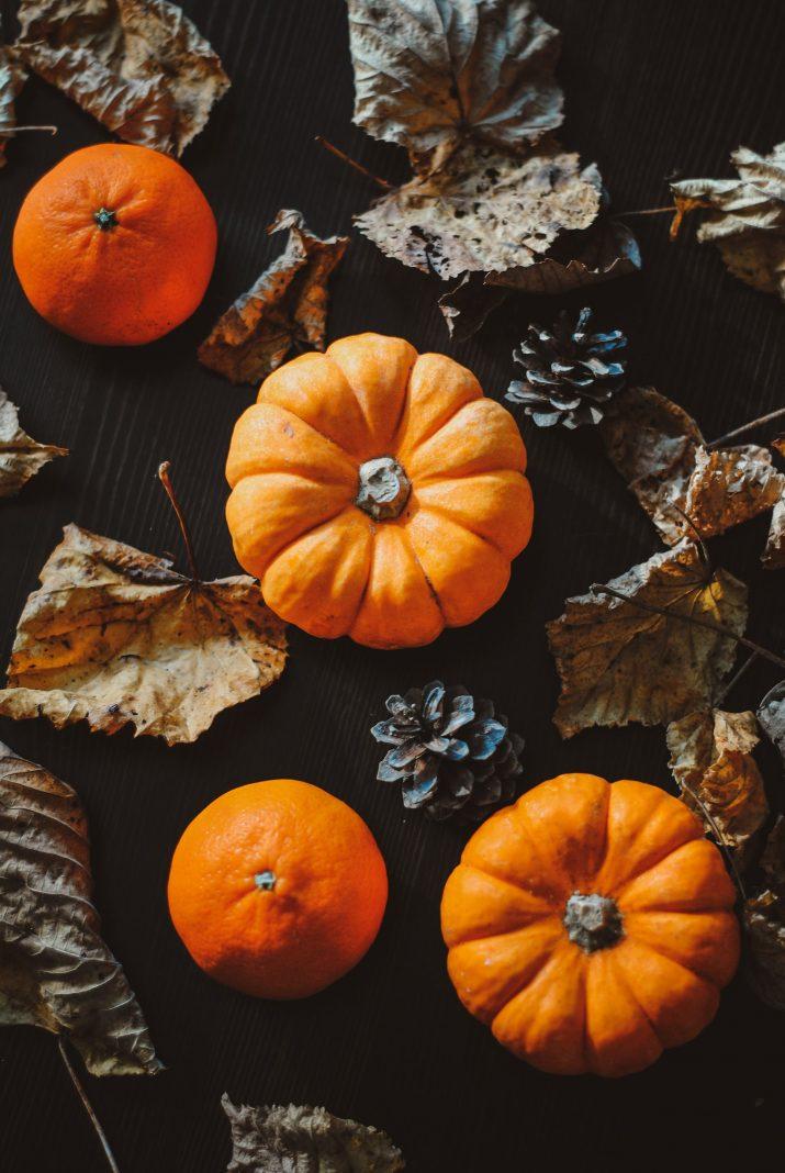 Pumpkin Wallpaper 1