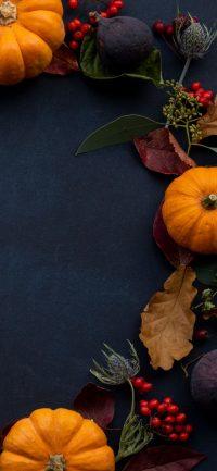 Pumpkin Wallpaper 8