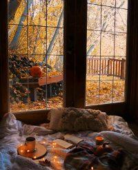 Autumn Wallpaper 50