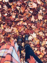 Autumn Wallpaper 10