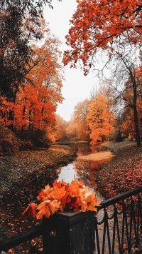 Autumn Wallpaper 7