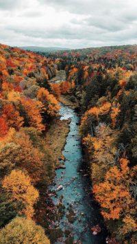 Autumn Wallpaper 27