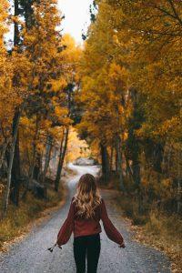Autumn Wallpaper 18