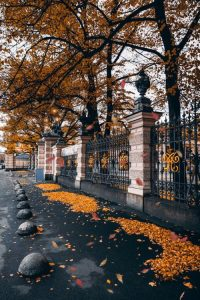 Autumn Wallpaper 17