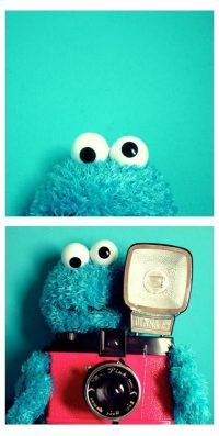 Cookie Monster Wallpaper 7