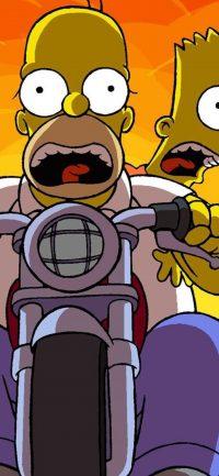 Homer Simpson Wallpaper 5