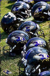 Ravens Wallpaper 9