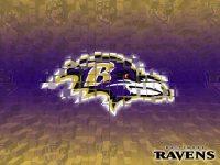 Ravens Wallpaper 4