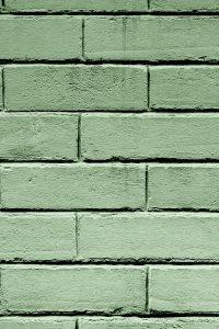 Sage Green Wallpaper 10