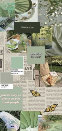 Sage Green Wallpaper 8